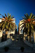 Korcula old town's Sea Gate (Primorska Vrata) and Palm trees, late afternoon sunlight. Korcula old town, island of Korcula, Croatia