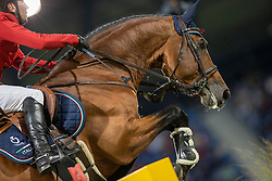 Pisani Riccardo, ITA, Chaclot<br /> CHIO Aachen 2021<br /> © Hippo Foto - Dirk Caremans<br />  16/09/2021