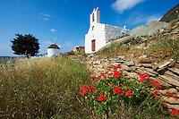 Grèce, Les Cyclades, Ile de Ios, eglise et moulin à Chora  // Greece, Cyclades, Ios island, church and windmill near Chora