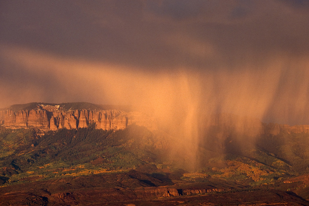 Afternoon storm squall, autumn, San Juan National Forest, Colorado, USA