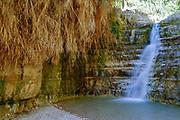 Israel, Dead Sea, Ein Gedi national park the waterfall in Wadi David