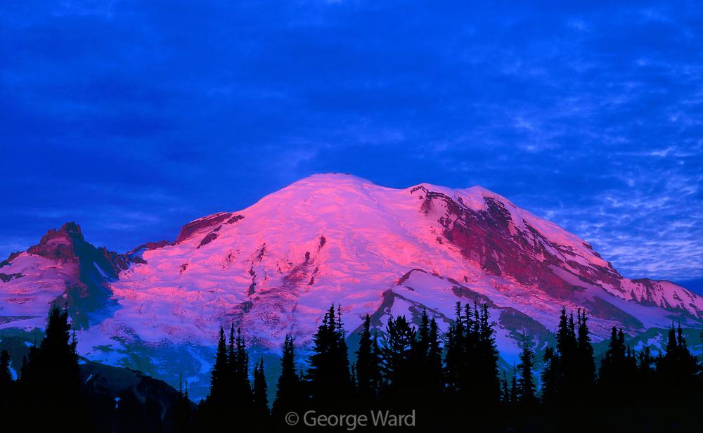 Mount Rainier with Sunrise Glow, Mount Rainier National Park, Washington