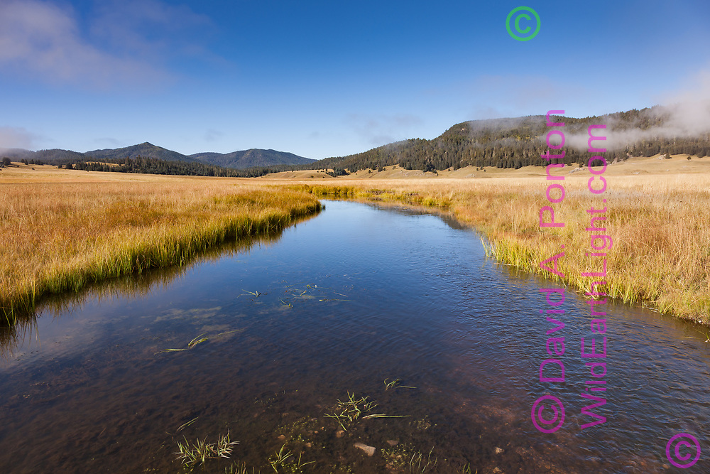 East Fork of the Jemez River under blue sky, passing through the grassland of the Valle Grande, largest caldera in Valles Caldera National Preserve. The distance mountains at the upper left have intact conifer forests as the photo was taken in September 2009, prior to the 2011 Las Conchas Fire , Jemez Mountins, NM, © David A. Ponton