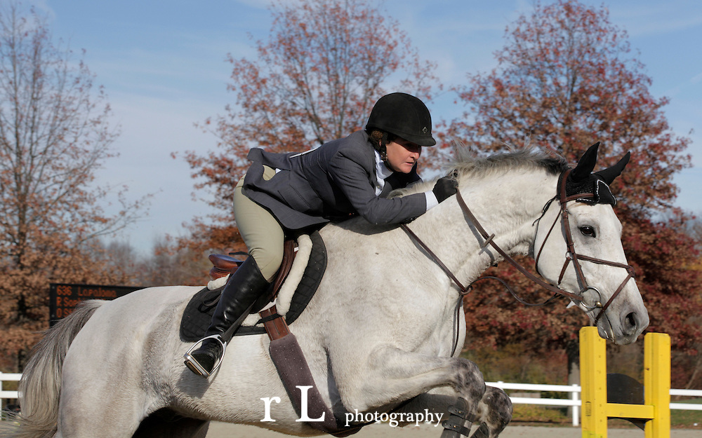 Best Equine Photography from Woodedge Farm at NJ Horse Park, Nov 12-14 2010