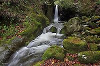 Waterfalls, Tangjiahe National Nature Reserve, NNR, Qingchuan County, Sichuan province, China