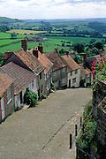 Historic hillside cottages on cobbled street Gold Hill, Shaftesbury, Dorset, England, UK