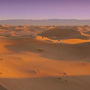 Sahara desert sand dunes, Erg Chegaga, Morocco (November 2006)