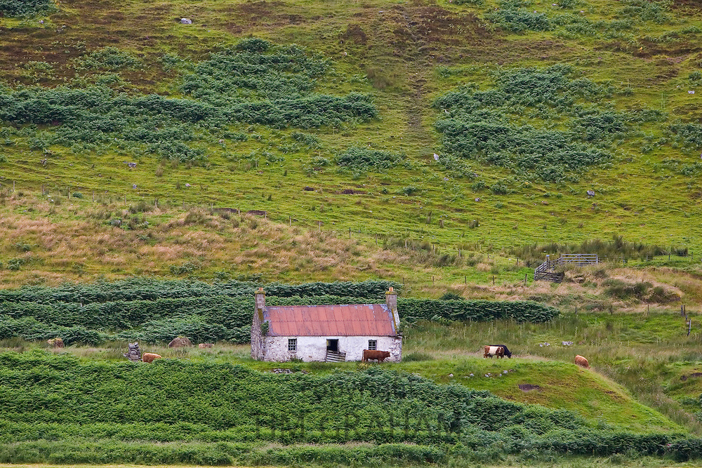 Abandoned croft in the Scottish highlands, Caithness, United Kingdom