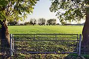 Nederland, Ooijpolder, 6-11-2020 Het gebied van de voorgenome bouw van een mega zonnepark van 180 ha. door de gemeente Berg en Dal .Het mega zonneveld moet tussen Kekerdom en Millingen aan de Rijn komen en veel inwoners vinden de plannen te ambitieus en de oppervlakte groot . De Ooijpolder is een groot gebied langs de Waal tussen Nijmegen en de Duitse grens. Delen ervan zijn door staatsbosbeheer beheerd natuurgebied waaronder de millingerwaard en het maakt deel uit van de gelderse poort .Foto:Flip Franssen
