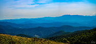 A panorama of the Blue Ridge Mountains from the top of Roan Mountain.