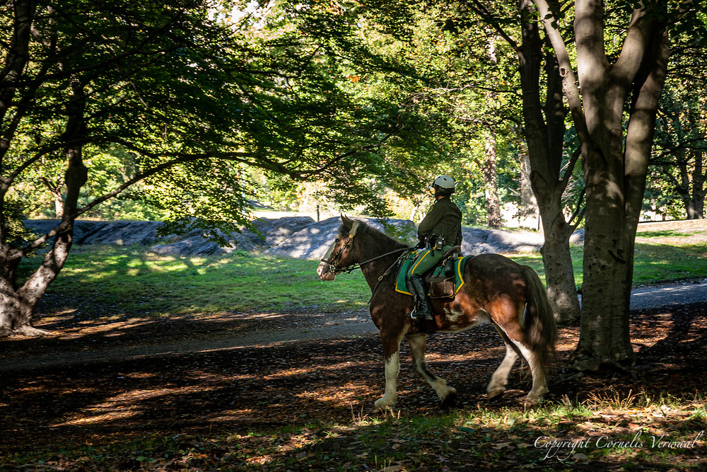 A mounted Central Park Enforcement Officer keeps an eye on things.