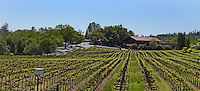 Ironstone Vineyard, Murphys, California, USA, 201304211719<br /> <br /> Copyright Image from Victor Patterson, 54 Dorchester Park, Belfast, UK, BT9 6RJ<br /> <br /> Tel: +44 28 9066 1296<br /> Mob: +44 7802 353836<br /> Voicemail +44 20 8816 7153<br /> Skype: victorpattersonbelfast<br /> Email: victorpatterson@me.com<br /> Email: victorpatterson@ireland.com (back-up)<br /> <br /> IMPORTANT: If you wish to use this image or any other of my images please go to www.victorpatterson.com and click on the Terms & Conditions. Then contact me by email or phone with the reference number(s) of the image(s) concerned.