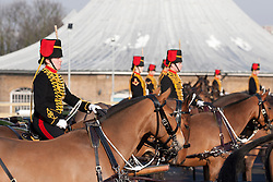 © Licensed to London News Pictures. 07/02/2012. LONDON, UK. Soldiers of the Kings Troop Royal Horse Artillery parade at their new barracks in Woolwich today (07/02/12). Previously based at St John's Wood since 1947, the Royal Artillery's ceremonial unit today arrived at their new home at Napier Barracks in Woolwich Photo credit: Matt Cetti-Roberts/LNP