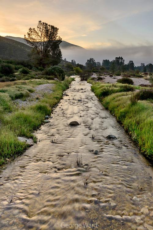 Chalone Creek at Dawn, Pinnacles National Park, California
