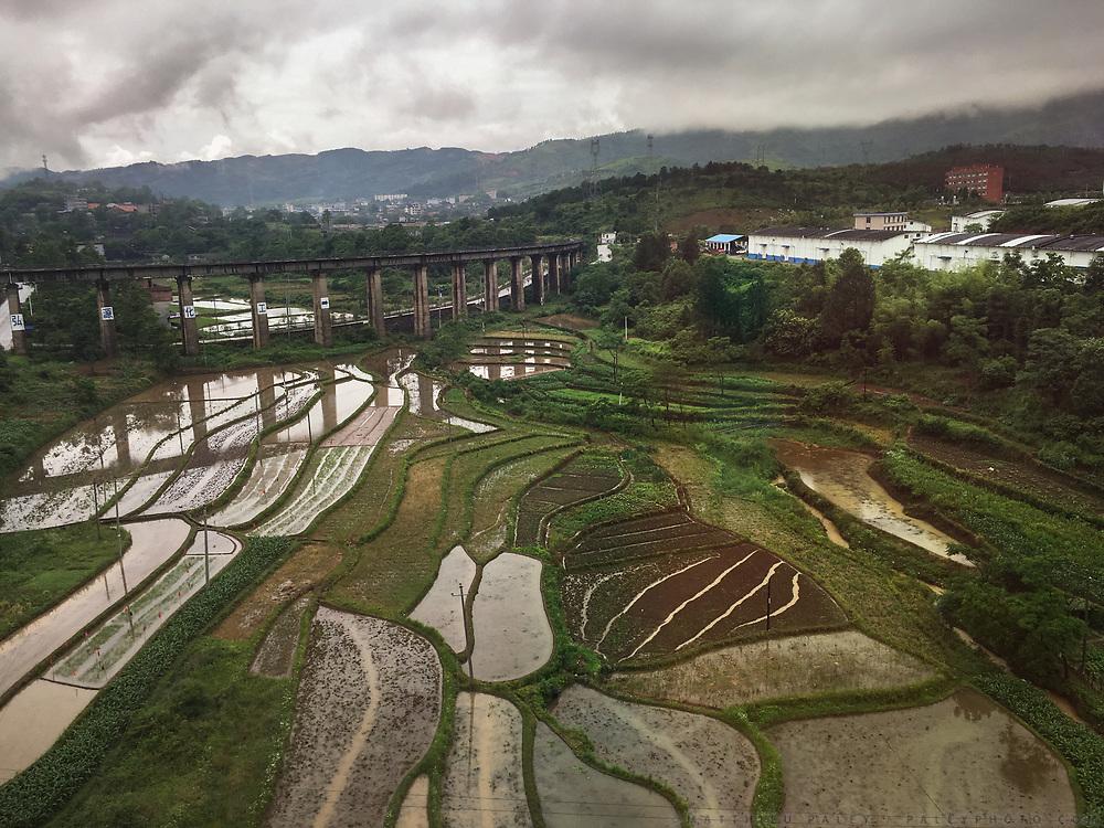 Rice fields between Chenzhou and Hengyang. Life in the train from Hong Kong to Urumqi, Xinjiang.