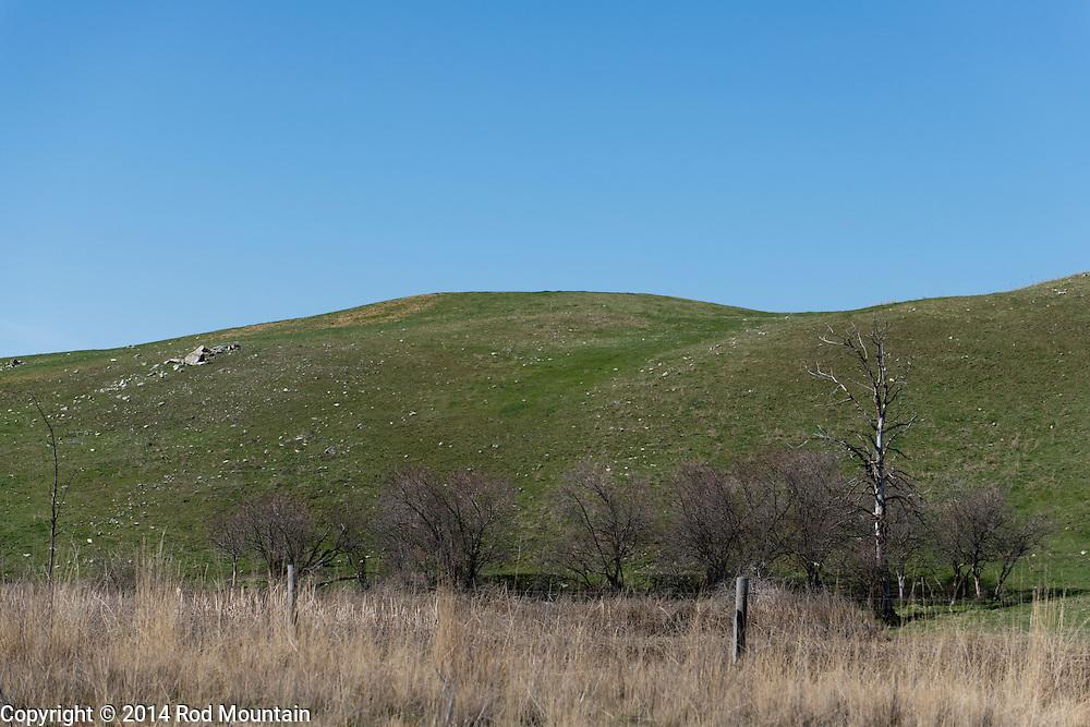An Okanagan hillside used for cattle grazing.