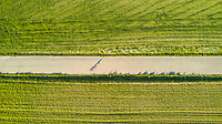 Aerial view of man riding a bicycle in countryside road, Girona, Spain.