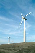 Windmills for energy, Zeeland, Netherlands.