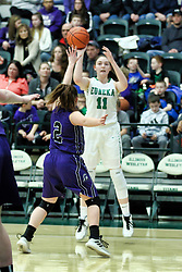 26 January 2019: El Paso Gridley (EP-G) Titans v Eureka Hornets Championship girls game during the McLean County Tournament at Shirk Center in Bloomington Illinois