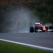 F1 Jerez Pre-Season Testing 2014