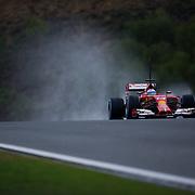 Jerez F1 January 31, 2014