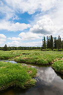 Summer skies over Jackfish Creek in Riding Mountain National Park, Manitoba, Canada