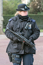 © Licensed to London News Pictures. 22/01/2015. London, UK. A female officer near the Mall near St James Palace.  Armed police officers in and around central London today 22 January 2015. UK Foreign Secretary Philip Hammond said that ISIS is the greatest threat to the UK's security at the moment. Photo credit : Stephen Simpson/LNP