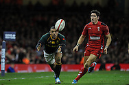 South Africa's Bryan Habana beats James Hook to the loose ball.  Autumn International rugby, 2013 Dove men series, Wales v South Africa at the Millennium Stadium in Cardiff,  South Wales on Saturday 9th November 2013. pic by Andrew Orchard, Andrew Orchard sports photography,