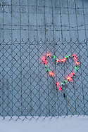 Christmas lights in the shape of a heart behind a fence and barbed wire in Nenana, Alaska