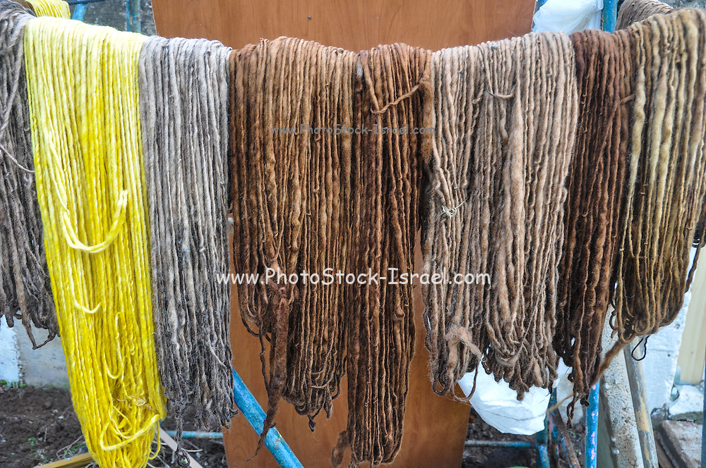 Hand spun wool dyed in natural colours