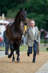 Hoy Andrew (AUS) - Rutherglen<br /> Horse Inspection <br /> CCI4*  Luhmuhlen 2014 <br /> © Hippo Foto - Jon Stroud