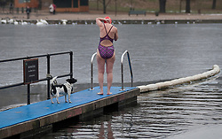 © under license to London News Pictures. 25/12/10. Members of the Serpentine Swimming Club brave ice and freezing temperatures to take part in their annual Christmas day swim in Hyde Park, London. Accompanied by a dog a female swimmer prepares to take to the water. Credit should read Matt Cetti-Roberts/London News Pictures
