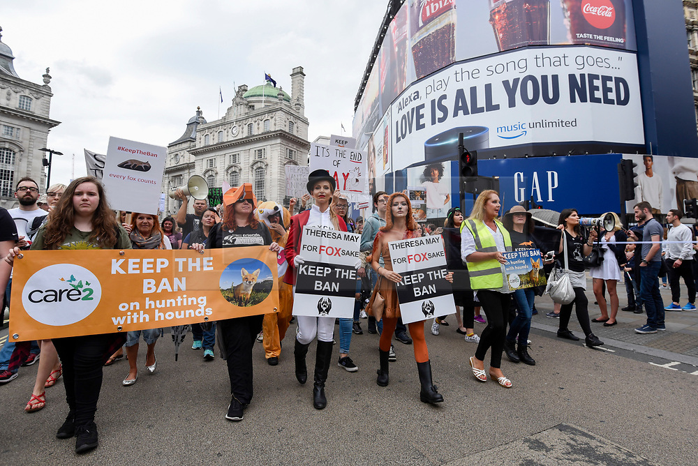 """© Licensed to London News Pictures. 29/05/2017. London UK. TV wildlife presenter Anneka Svenska and model Daryna Milgevska in fox costume and body paint join demonstrators in an """"Anti-Hunting March"""" in central London, marching from Cavendish Square to outside Downing Street.  Protesters are demanding that the ban on fox hunting remains, contrary to reported comments by Theresa May, Prime Minister, that the 2004 Hunting Act could be repealed after the General Election.<br />  Photo credit : Stephen Chung/LNP"""