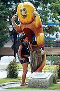 Das Goldgelbe Löwenäffchen ist die populärste der insgesamt vier Löwenäffchen-Arten. Dieser Affe, der eine Telephon-Zelle überdacht, garantiert seine Verschwiegenheit. | The Golden Lion Tamarin is the most popular one of the four Lion Tamarin species. This monkey roofing a phone booth guarantees discretion.