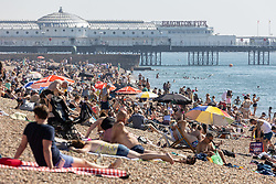 Licensed to London News Pictures. 07/09/2021. Brighton, UK. Sunbathers enjoy the warm weather on Brighton Beach, East Sussex as weather forecaster predict a scorching 30c high today with September temperatures expecting to hit over 29c tomorrow. Photo credit: Alex Lentati/LNP
