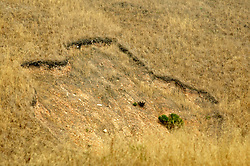 Disturbed Area / Mudslide
