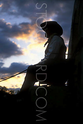 silhouette of a man sitting on a western covered wagon