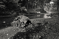 small stream flowing through the green mountains in northern vermont, black and white