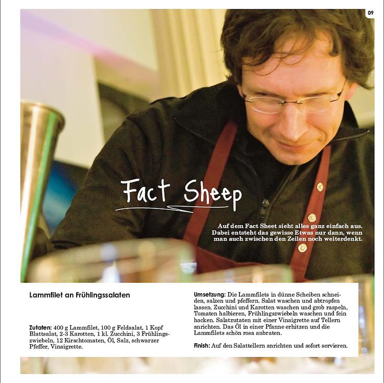 Kochbuch im PR und Werbe-Jargon für die Agentur rheinfaktor gmbh, Köln