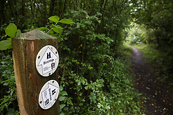 A signpost indicates paths to two different bird hides at Calvert Jubilee Nature Reserve on 27 July 2020 in Calvert, United Kingdom. On 22nd July, the Berks, Bucks and Oxon Wildlife Trust (BBOWT) reported that it had been informed of HS2's intention to take possession of part of Calvert Jubilee nature reserve, which is home to bittern, breeding tern and some of the UK's rarest butterflies, on 28th July to undertake unspecified clearance works in connection with the high-speed rail link.