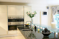 Modern kitchen in new house with expensive appliances