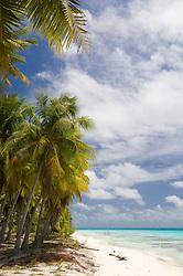 , French Polynesia - 10/25/2006 - Fakarawa, Tuamotu Archipelago, French Polynesia.(Photo by Sharpshooters/VWPics) *** Please Use Credit from Credit Field *** *** Please Use Credit from Credit Field ***