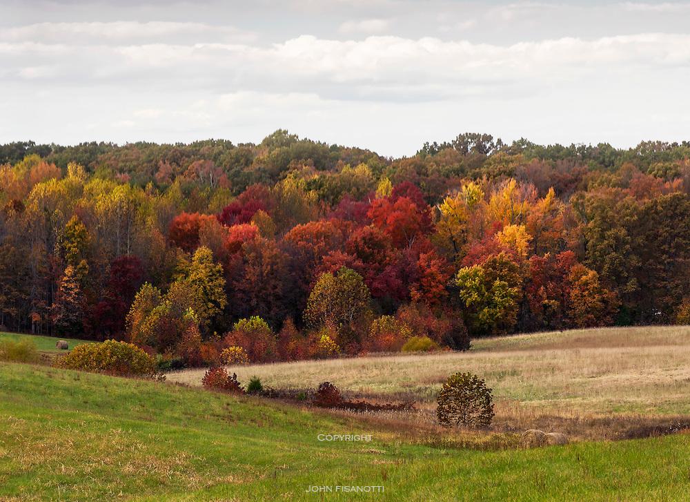 Chancellorsville Battlefield, Virginia