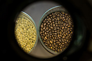 Coffee beans are on display at Weekend Coffee Roasters HQ in San Jose, California, on February 25, 2016. (Stan Olszewski/SOSKIphoto)