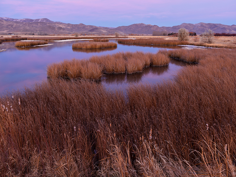 Editions of 8<br /> Purdys Pond in maroon evening glow at the Nature Conservancy on Silver Creek Preserve near Picabo Idaho