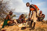 Samburu warriors slaughtering a goat,,Samburu, Kenya, Africa