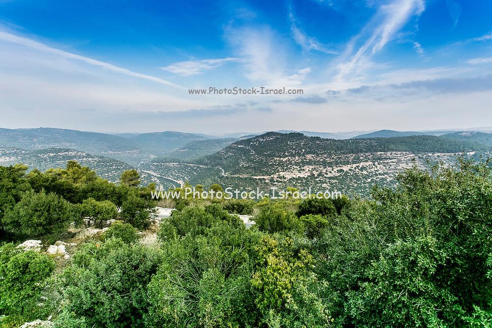 Israel, Judean foothills landscape, near Jerusalem, Photographed at Moshav Nes Harim