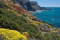 Ponta Ruiva Beach, Southwest Alentejo and Vicentine Coast Natural Park, Portugal