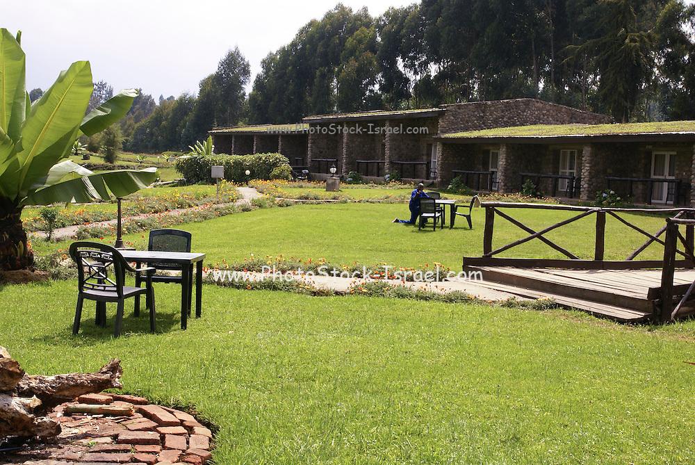 Rwanda, Volcanoes National Park (Parc National des Volcans) Gorilla Nest Lodge