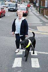 Visually impaired woman walking across the road with a guide dog,